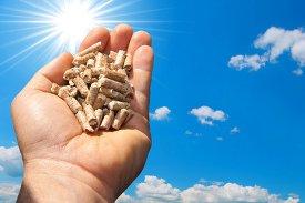 Servizi biomasse ed energie rinnovabili